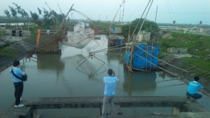 Net lifting in a shrimp pond in Giao Thuy